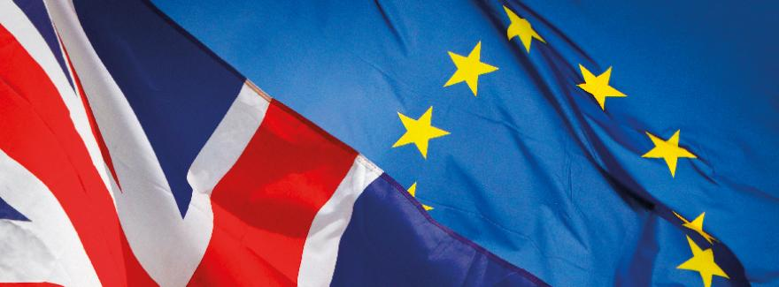 https://financien.belgium.be/fr/douanes_accises/entreprises/brexit